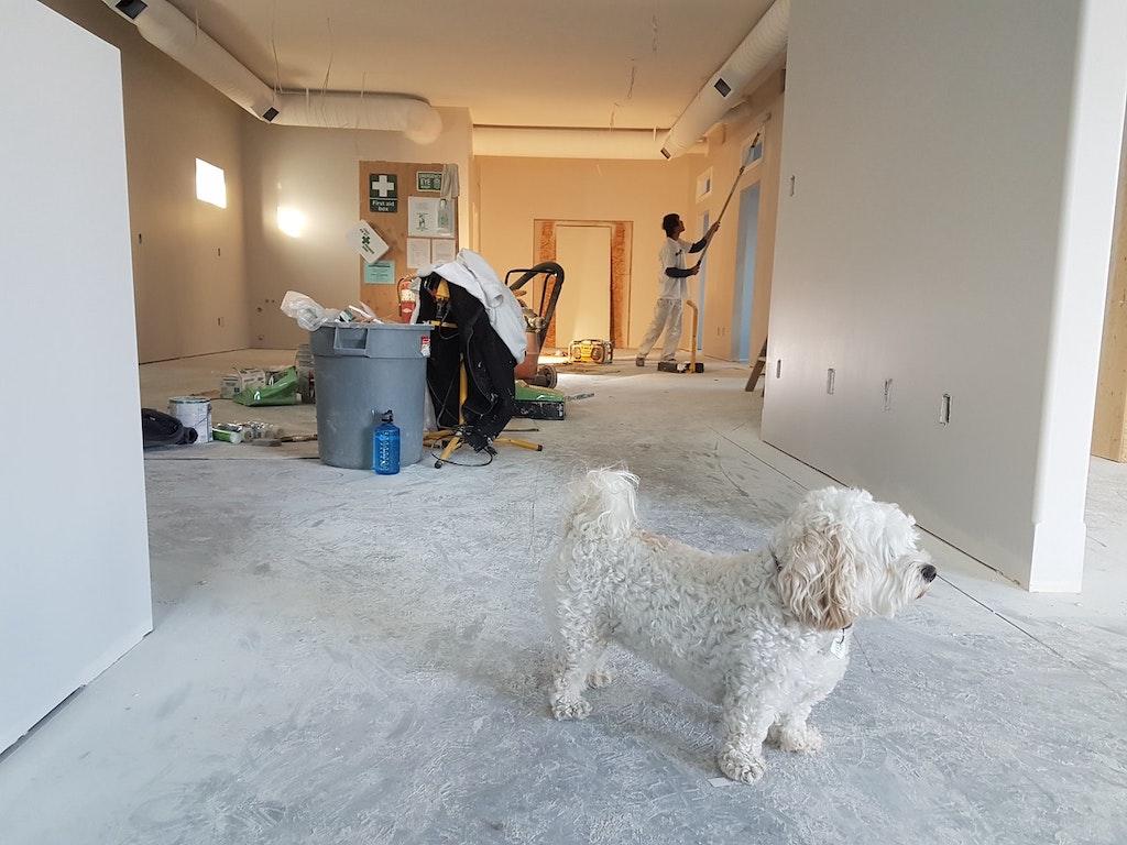 Home Improvement_1